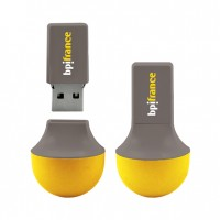 Chilli Shape USB Flash Drive