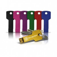 Key Shape Metal USB Flash Drive & Key ring with Logo Printing